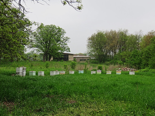 Beehives at Hickory Knolls 2150515