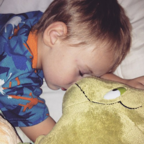#seaturtles makes everyone ok. #sleep #sleepinyourownbedplease