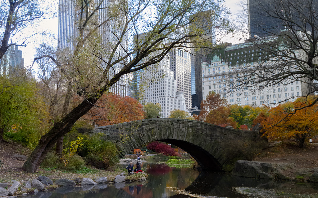 Central Park New York Apartments For Sale