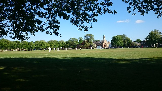 Kew Cricket