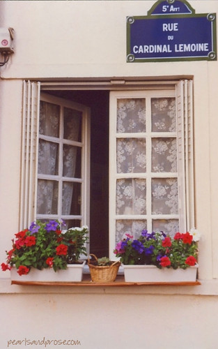 Paris_window_box_web