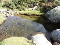 Vasque dans la descente du Ghjavinghjolu