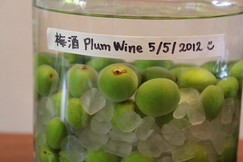Plum wine | by findingsachi