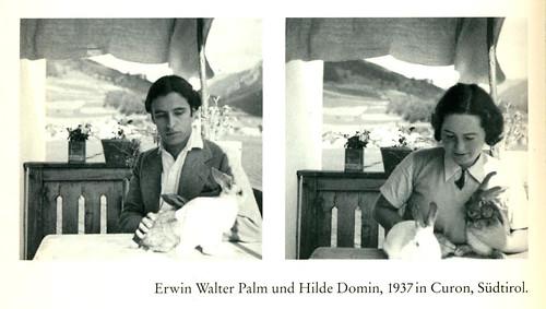 palmswithbunnies1937