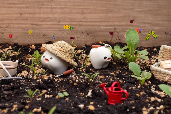 Gardening Toof