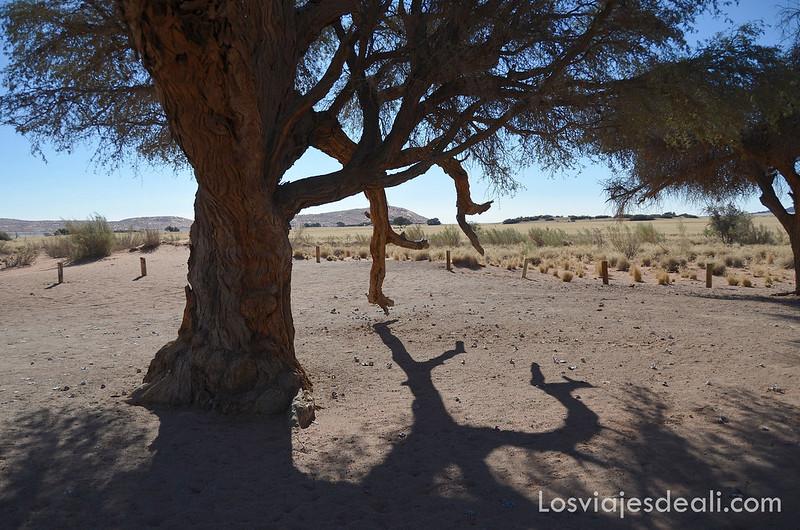 desierto del namib