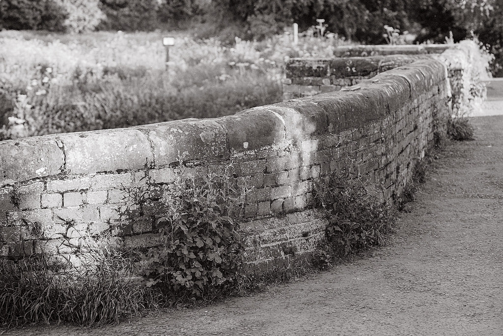 Leica M3 & 90mm elmarit-m