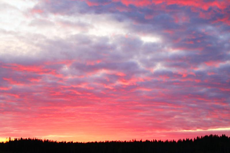 sunsets5