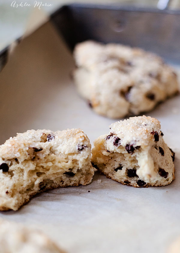 Easy Chocolate Chip Scones | Ashlee Marie