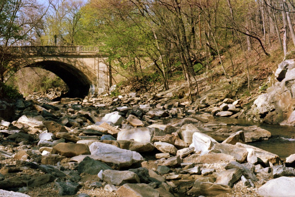 Photo of Herring Run by Steven Brown