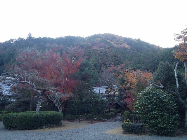 朝倉山 真禅院境内より