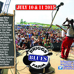 DCBS Ticket Giveaway - Briggs Farm Blues Festival 2015