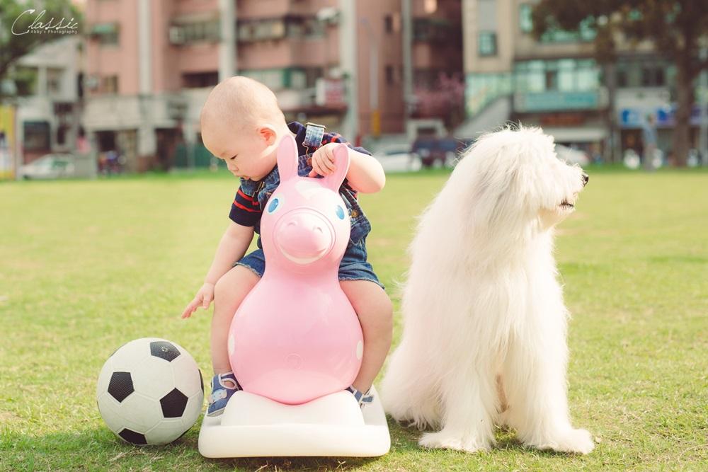 親子寫真攝影寵物雙胞胎寶寶合照攝影師