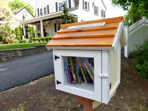 Newton's newest little free library