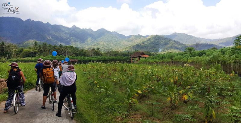 jogja bike tour