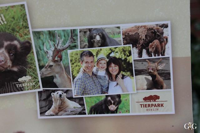 Tierpark Friedrichsfelde 10.05.20159