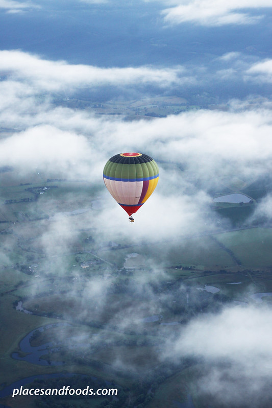 yarra valley hot air ballon on top of clouds large