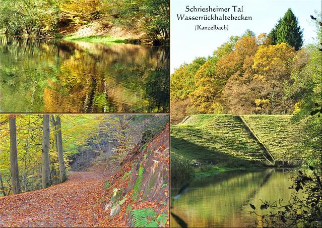 Schriesheimer Tal - Naturpark Neckartal-Odenwald - Hochwasserrückhaltebecken - Kanzelbach, Kandelbach, Ilbe ... Herbstspaziergang ... Fotos und Collagen: Brigitte Stolle 2016