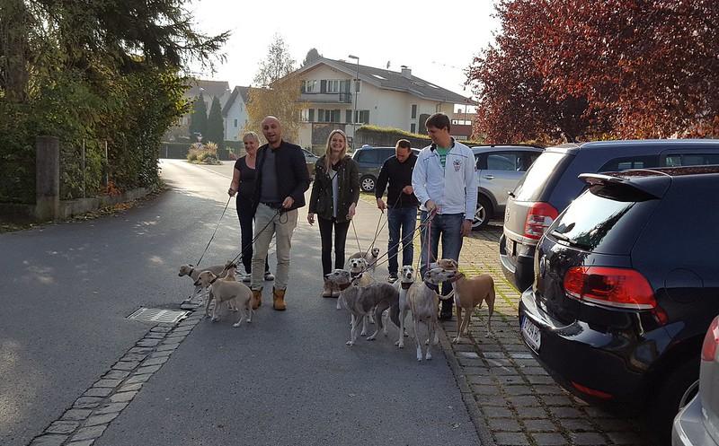 Familienausflug in Lochau