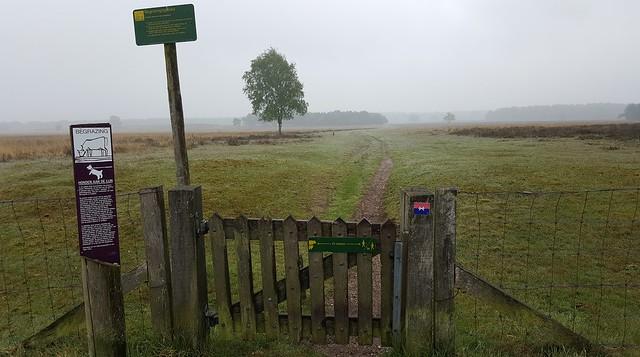 2015-0516 WESTERBORKPAD etappe 5 Bussum-Hilversum 20