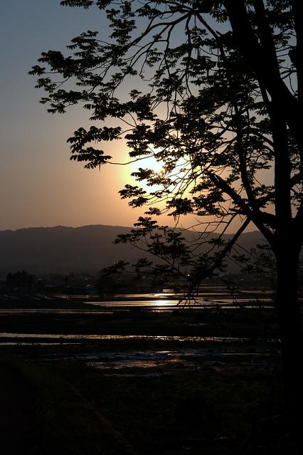 夕日_201505_NO1