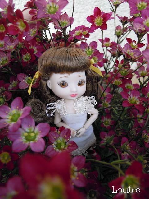 Amelia Thimble - Clarissa à l'extérieur p.3 - Page 2 16805335074_d1c8ea9f27_z