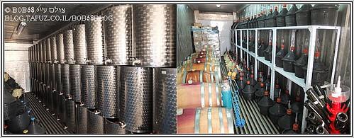 חלק מהמחקר על היין בארץ ישראל