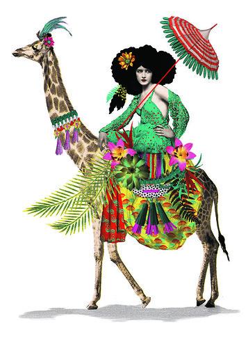 johnathan-reiner-Colonial-Giraffe