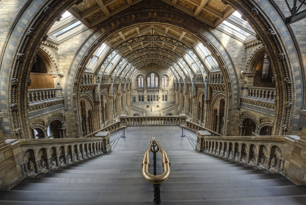 Foyer Museum Uk : London natural history museum main hall a common shot