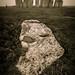 Slaughter Stone, Stonehenge