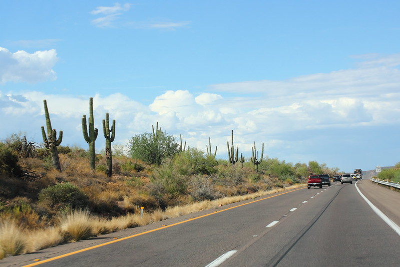 Phoenixista pohjoiseen