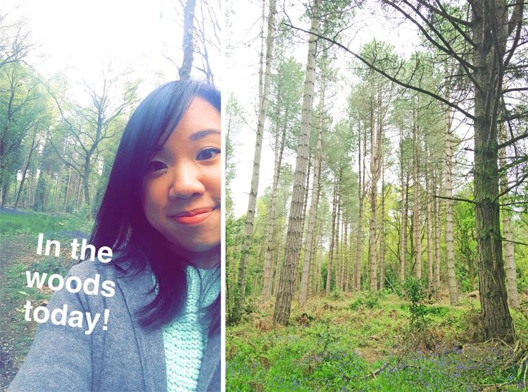 Hay Wood Selfie