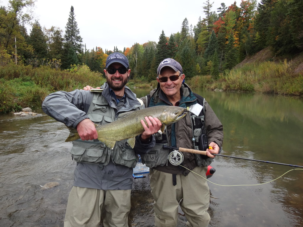 Fly fishing for ontario salmon