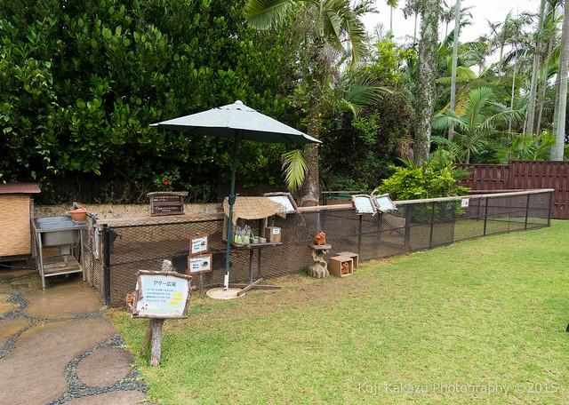 東南植物楽園-183