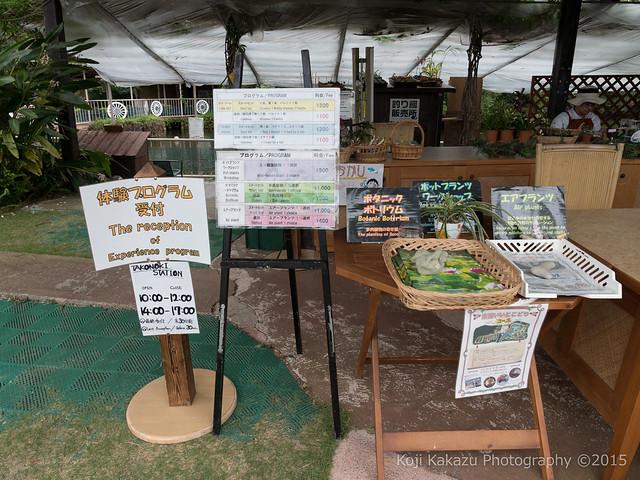 東南植物楽園-46