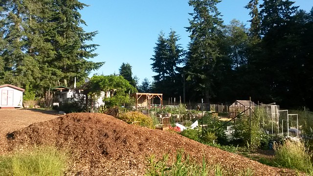 Mukilteo Community Garden