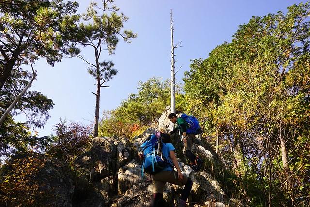 古賀志山 岩の尾根道