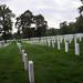 arlington national cemetery, virginia [_DSF0088]