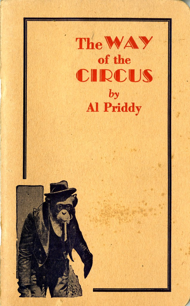 """Project """"Circus As A Way of Life"""" Held A Performance"""