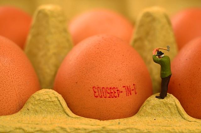 wat voor de één een eitje is