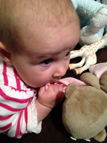 Chewing on a Monkey