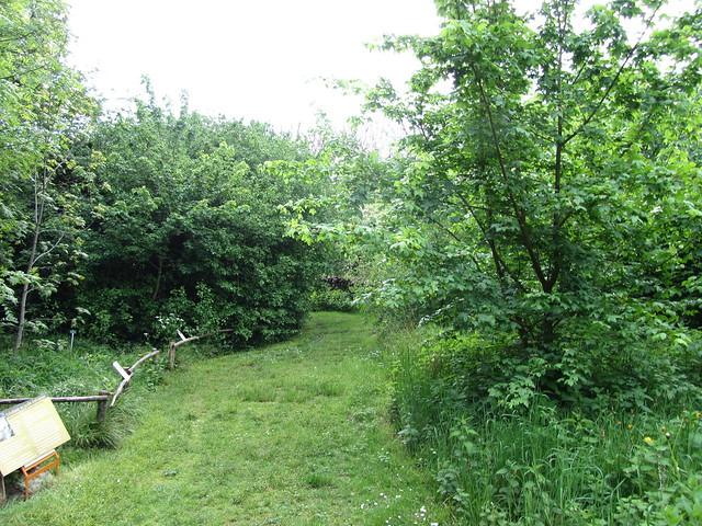 Visite du jardin cologique du jardin des plantes flickr for Animalerie du jardin des plantes