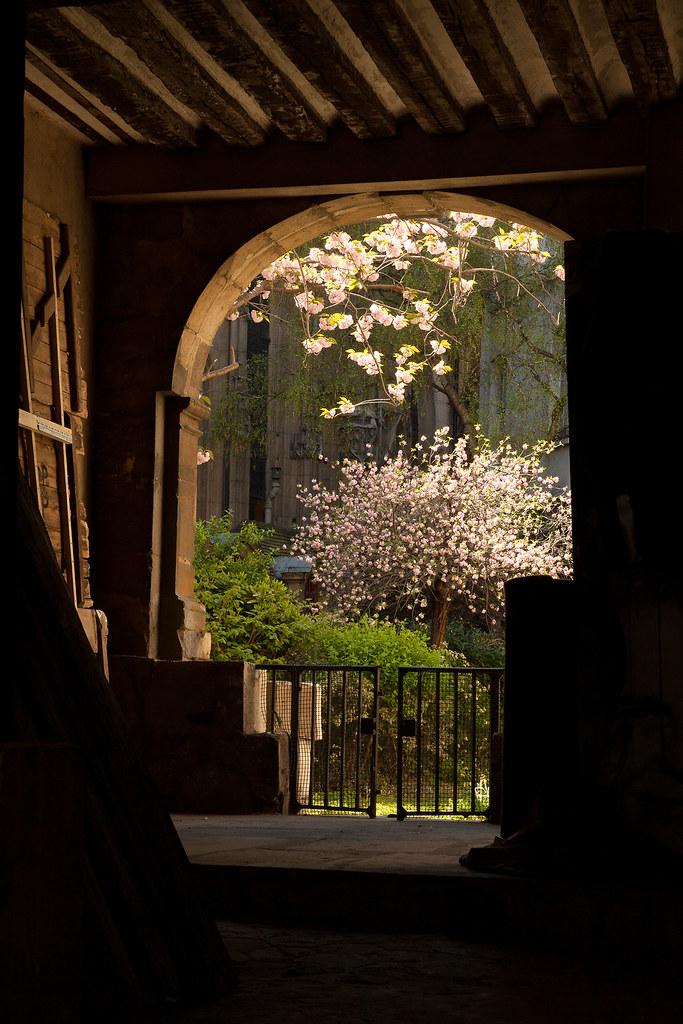 Le jardin secret paris france apr 2013 mathieu for Jardin secret paris