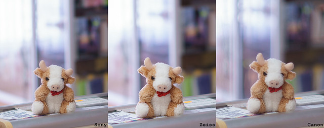 Sony-vs-Zeiss-vs-Canon