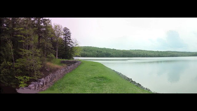 Myosotis Lake
