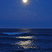 moonlight surf 8541