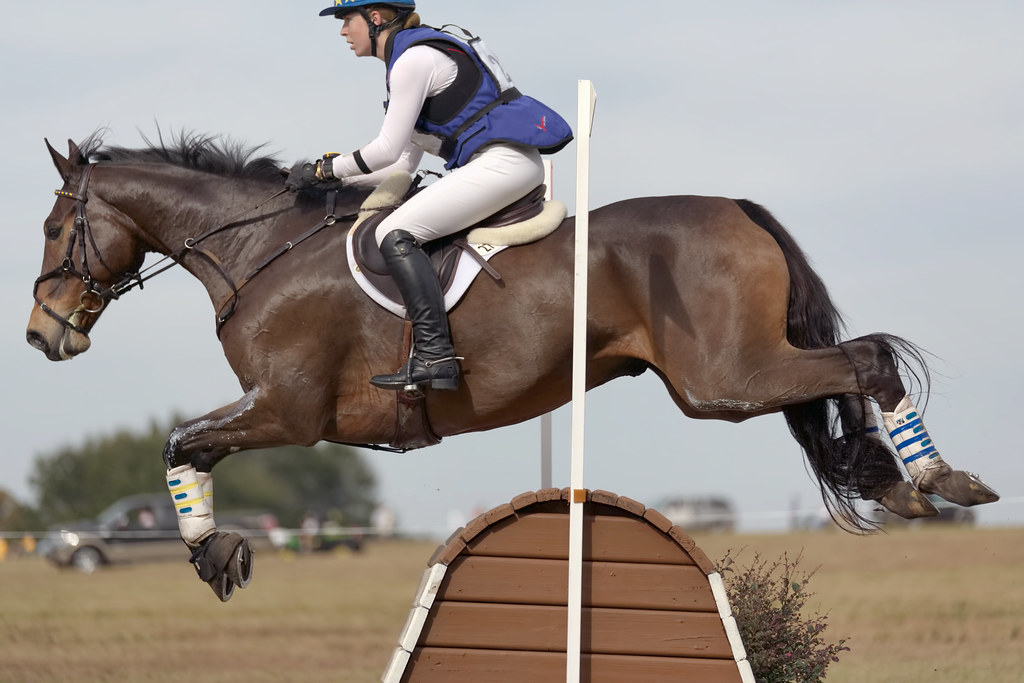 CCi1* - Jane Cook on Monatrea Xavier | Ocala Jockey Club ...