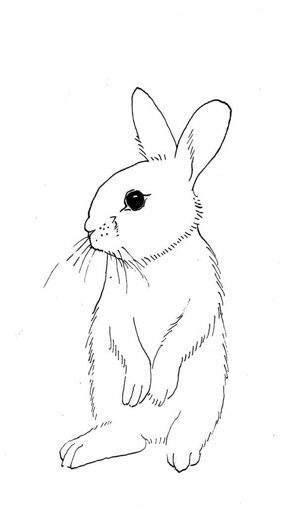rabbit outline sitting up | Dru | Flickr
