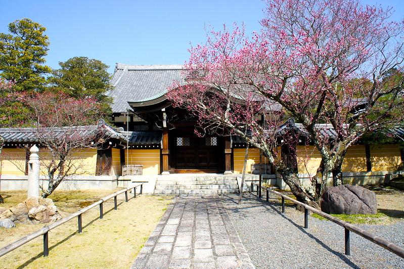 大方丈/金戒光明寺(Konkai Komyo-ji Temple / Kyoto City) 2015/03/17