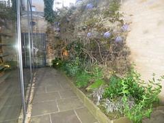 Corridoor garden